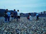 团队海岛活动