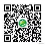 绍兴绿舟新能源汽车服务有限公司